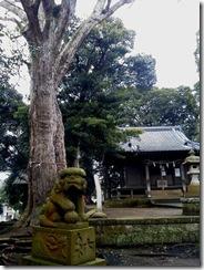 ブログ用の5霊神社